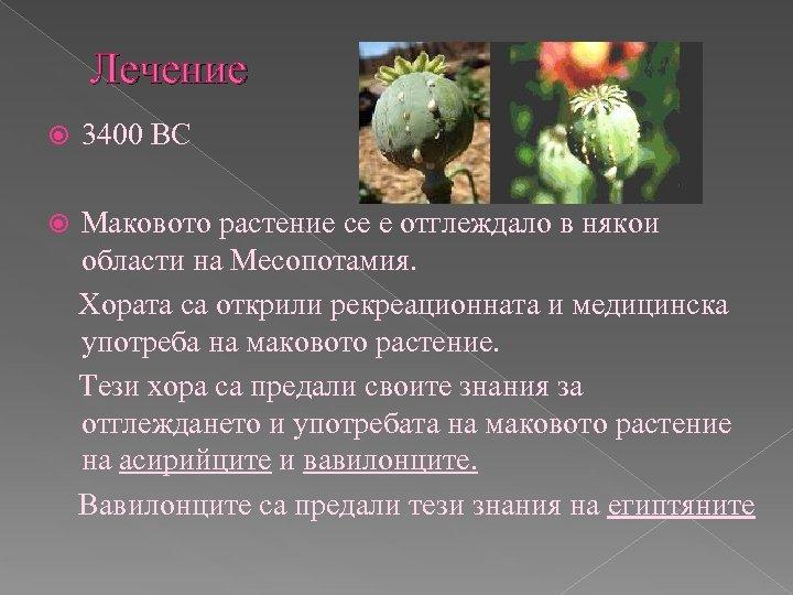 Лечение 3400 BC Маковото растение се е отглеждало в някои области на Месопотамия. Хората