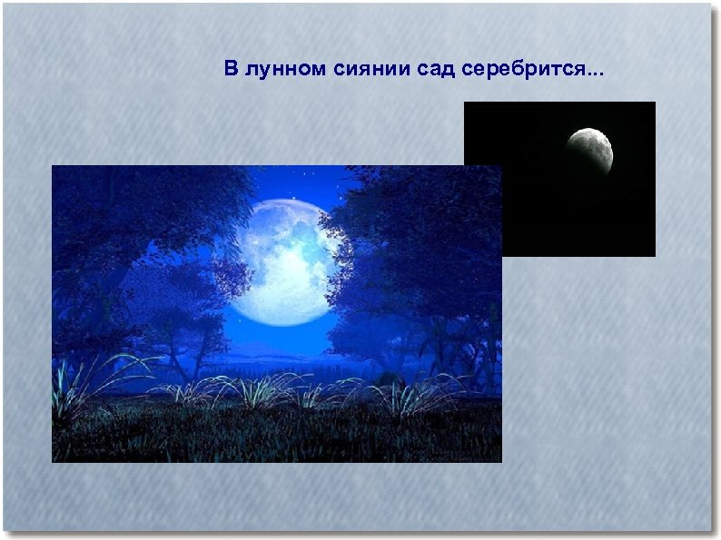 В лунном сиянии сад серебрится. . .