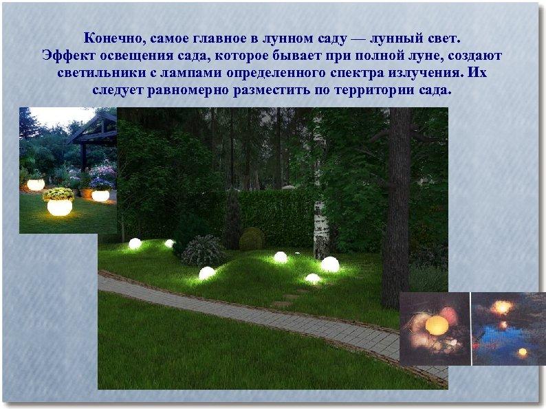Конечно, самое главное в лунном саду — лунный свет. Эффект освещения сада, которое бывает
