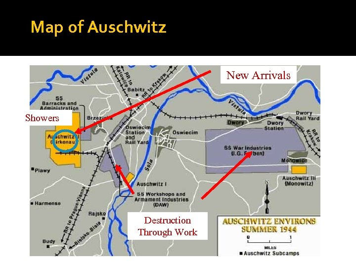 Map of Auschwitz New Arrivals Showers Destruction Through Work