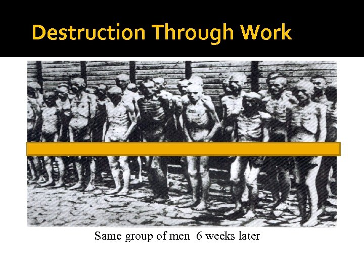 Destruction Through Work Same group of men 6 weeks later