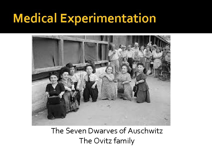 Medical Experimentation The Seven Dwarves of Auschwitz The Ovitz family