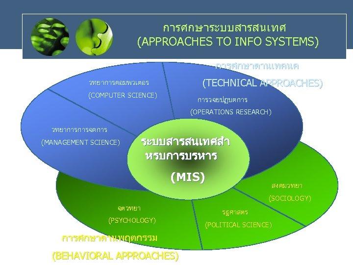 การศกษาระบบสารสนเทศ (APPROACHES TO INFO SYSTEMS) การศกษาดานเทคนค (TECHNICAL APPROACHES) วทยาการคอมพวเตอร (COMPUTER SCIENCE) การวจยปฏบตการ (OPERATIONS RESEARCH)