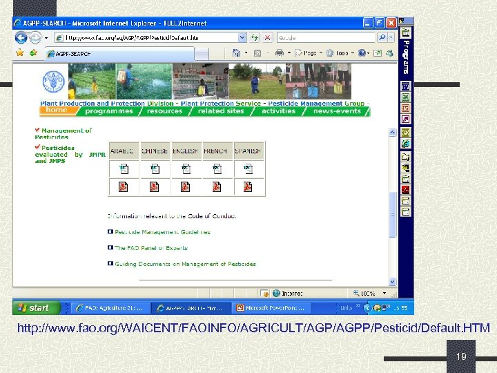 http: //www. fao. org/WAICENT/FAOINFO/AGRICULT/AGPP/Pesticid/Default. HTM 19