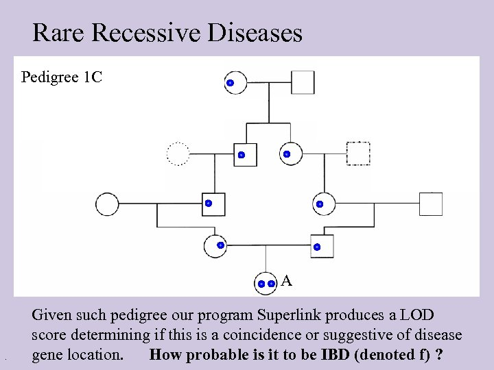 Rare Recessive Diseases Pedigree 1 C A . Given such pedigree our program Superlink