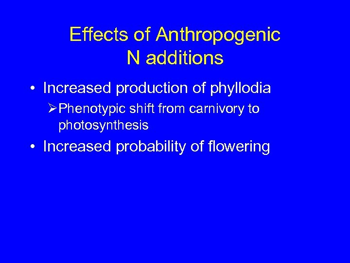 Effects of Anthropogenic N additions • Increased production of phyllodia ØPhenotypic shift from carnivory