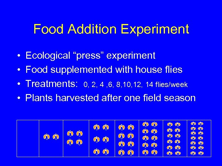 """Food Addition Experiment • • Ecological """"press"""" experiment Food supplemented with house flies Treatments:"""
