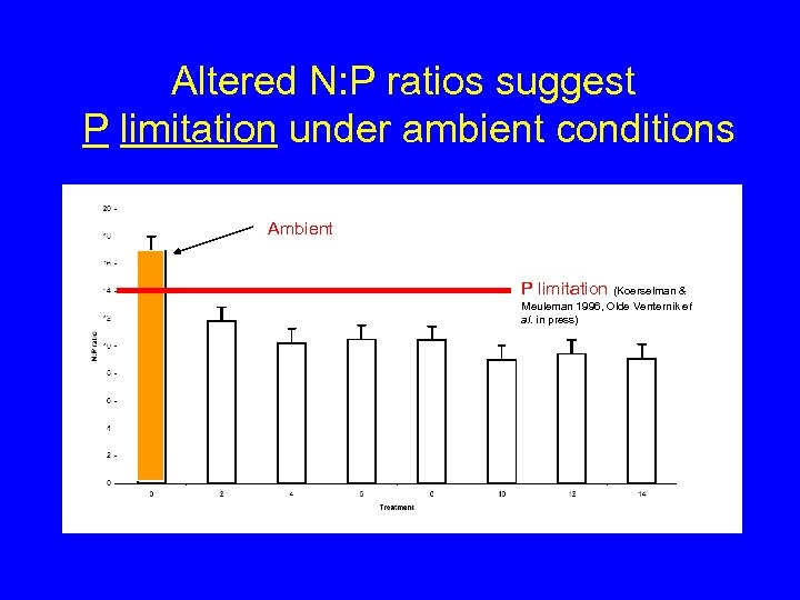Altered N: P ratios suggest P limitation under ambient conditions Ambient P limitation (Koerselman