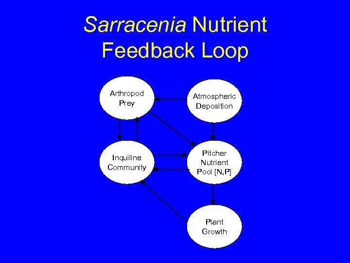 Sarracenia Nutrient Feedback Loop Arthropod Prey Atmospheric Deposition Inquiline Community Pitcher Nutrient Pool [N,