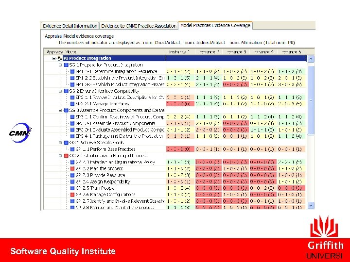 Software Quality Institute Griffith UNIVERSI
