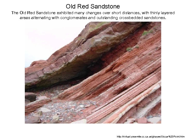 Old Red Sandstone The Old Red Sandstone exhibited many changes over short distances, with