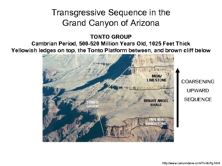 Transgressive Sequence in the Grand Canyon of Arizona TONTO GROUP Cambrian Period, 500 -520
