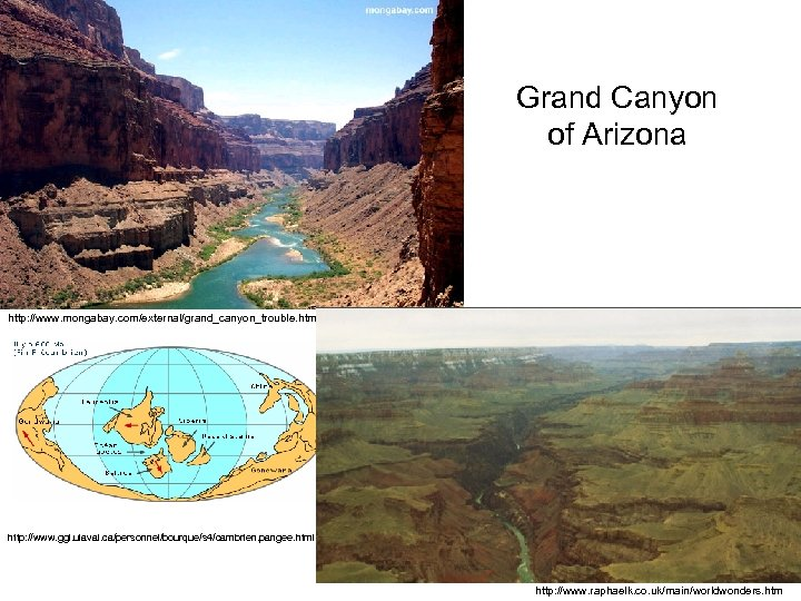 Grand Canyon of Arizona http: //www. mongabay. com/external/grand_canyon_trouble. htm http: //www. ggl. ulaval. ca/personnel/bourque/s