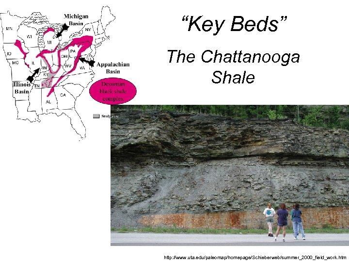 """Key Beds"" The Chattanooga Shale http: //www. uta. edu/paleomap/homepage/Schieberweb/summer_2000_field_work. htm"