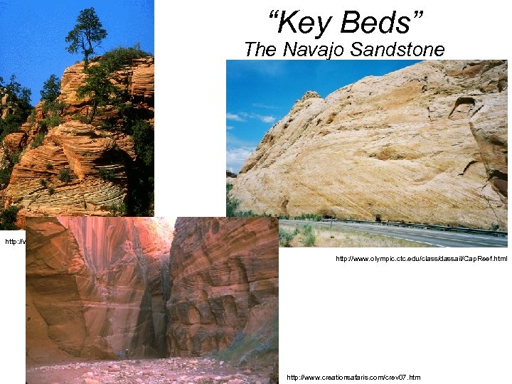 """""""Key Beds"""" The Navajo Sandstone http: //www. mines. utah. edu/geo/about_ES/Geology/Zion. GIFS/Xbed. SS. html http:"""