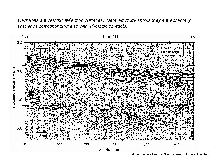 Dark lines are seismic reflection surfaces. Detailed study shows they are essentaily time lines