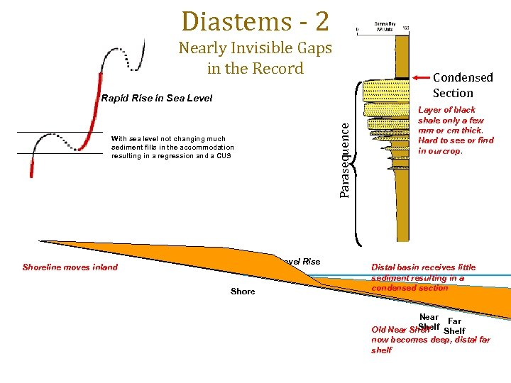 Diastems - 2 Nearly Invisible Gaps in the Record Condensed Section Parasequence Rapid Rise