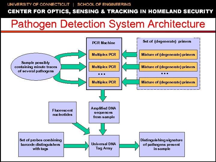 Pathogen Detection System Architecture PCR Machine Set of (degenerate) primers Multiplex PCR Fluorescent nucleotides
