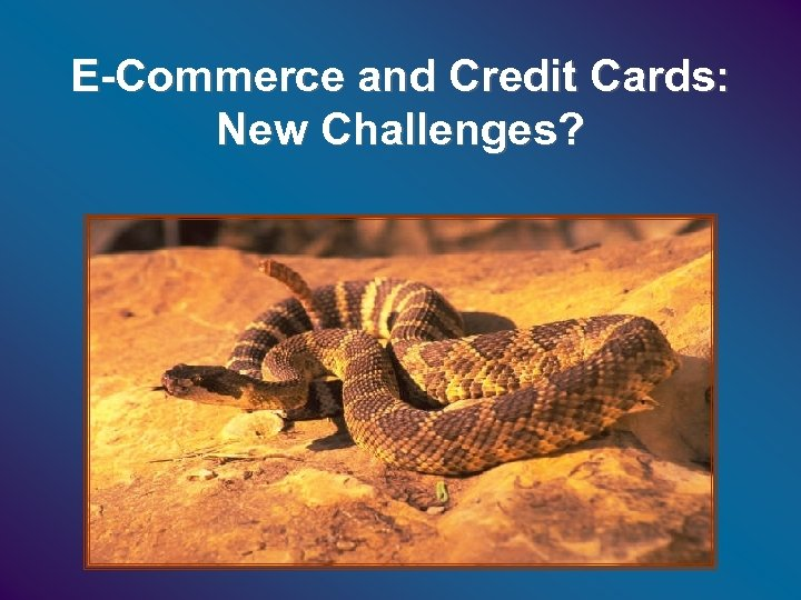 E-Commerce and Credit Cards: New Challenges?