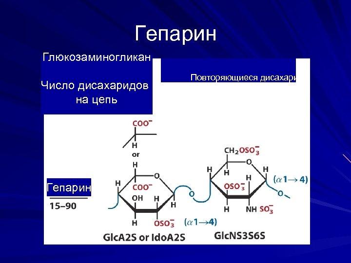 Гепарин Глюкозаминогликан Число дисахаридов на цепь Гепарин Повторяющиеся дисахариды