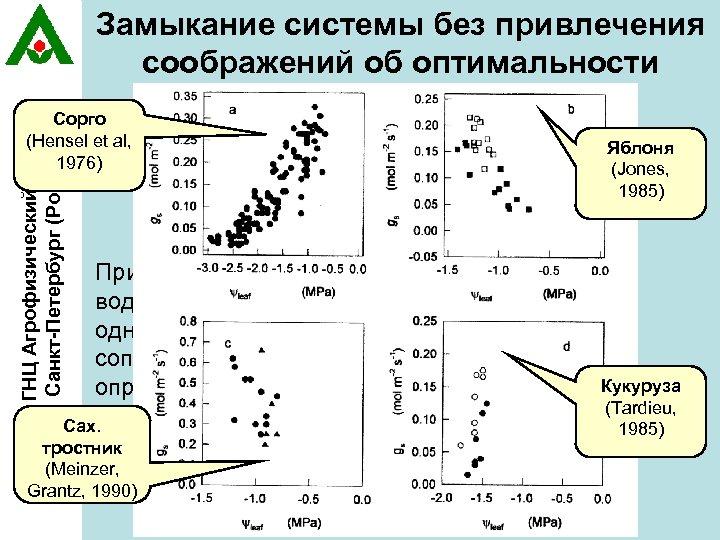 Замыкание системы без привлечения соображений об оптимальности ГНЦ Агрофизический НИИ, Санкт-Петербург (Россия) Дополнительное Сорго