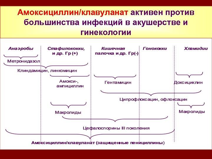 Амоксициллин/клавуланат активен против большинства инфекций в акушерстве и гинекологии