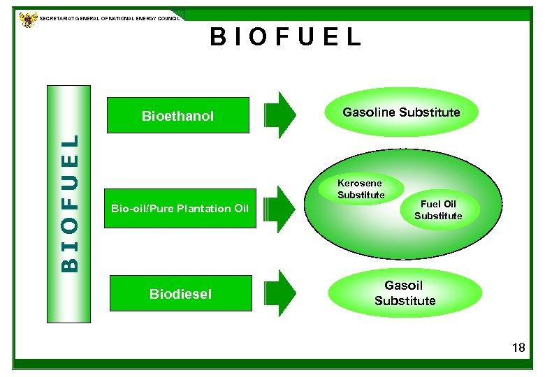SECRETARIAT GENERAL OF NATIONAL ENERGY COUNCIL BIOFUEL Bioethanol Gasoline Substitute Kerosene Substitute Bio-oil/Pure Plantation