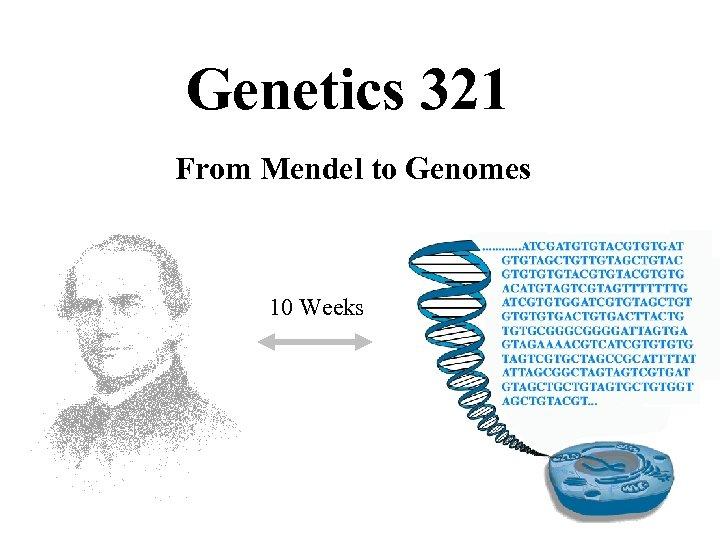 Genetics 321 From Mendel to Genomes 10 Weeks