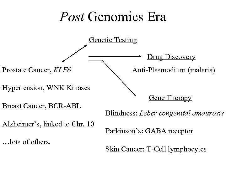 Post Genomics Era Genetic Testing Drug Discovery Prostate Cancer, KLF 6 Anti-Plasmodium (malaria) Hypertension,