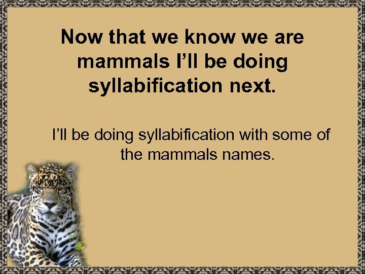 Now that we know we are mammals I'll be doing syllabification next. I'll be