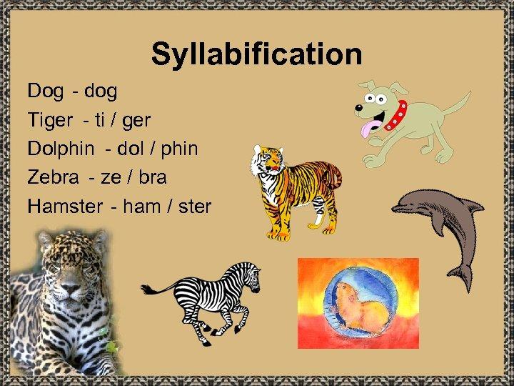 Syllabification Dog - dog Tiger - ti / ger Dolphin - dol / phin