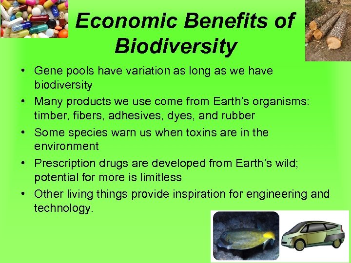 Economic Benefits of Biodiversity • Gene pools have variation as long as we have