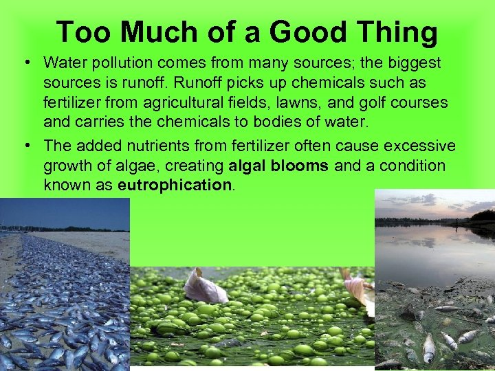 Too Much of a Good Thing • Water pollution comes from many sources; the