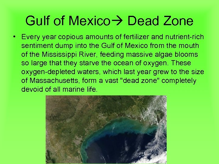 Gulf of Mexico Dead Zone • Every year copious amounts of fertilizer and nutrient-rich