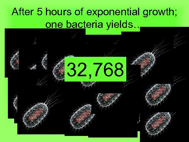 After 5 hours of exponential growth; one bacteria yields… 32, 768