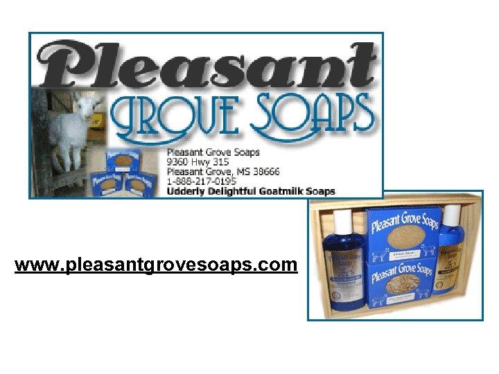 www. pleasantgrovesoaps. com