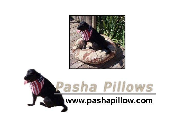 www. pashapillow. com