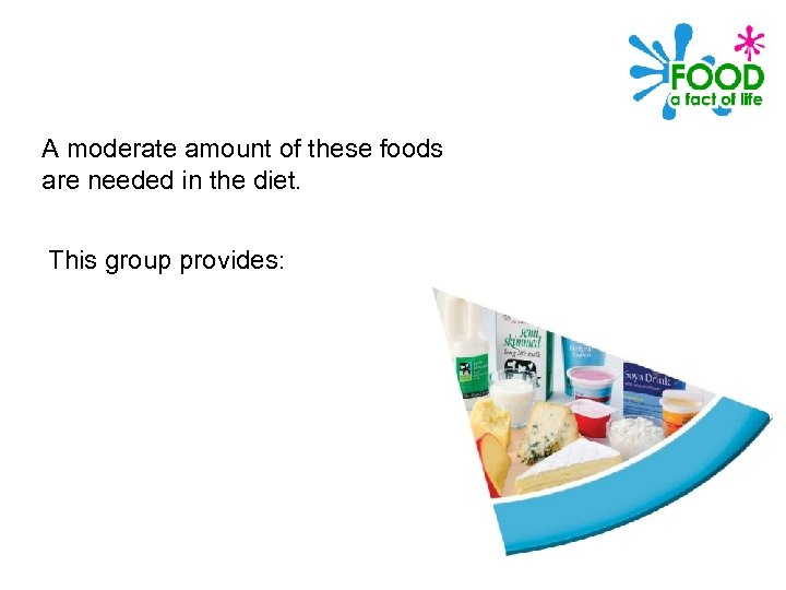 A moderate amount of these foods are needed in the diet. This group provides: