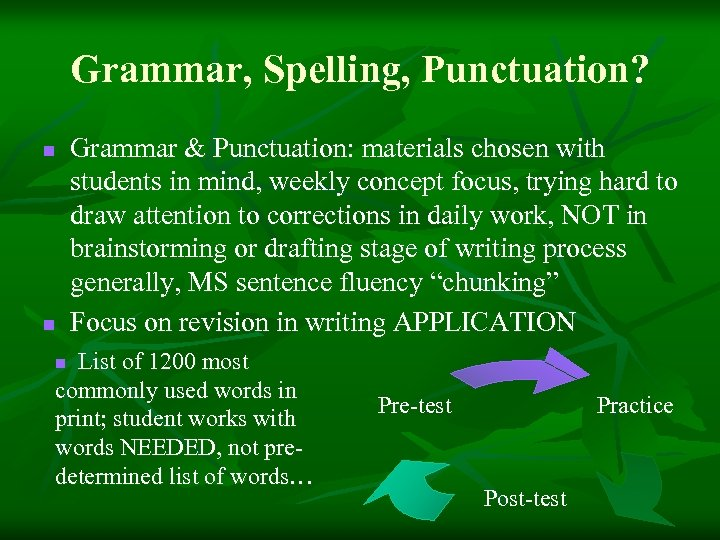 Grammar, Spelling, Punctuation? n n Grammar & Punctuation: materials chosen with students in mind,