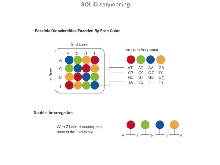 SOLi. D sequencing AT