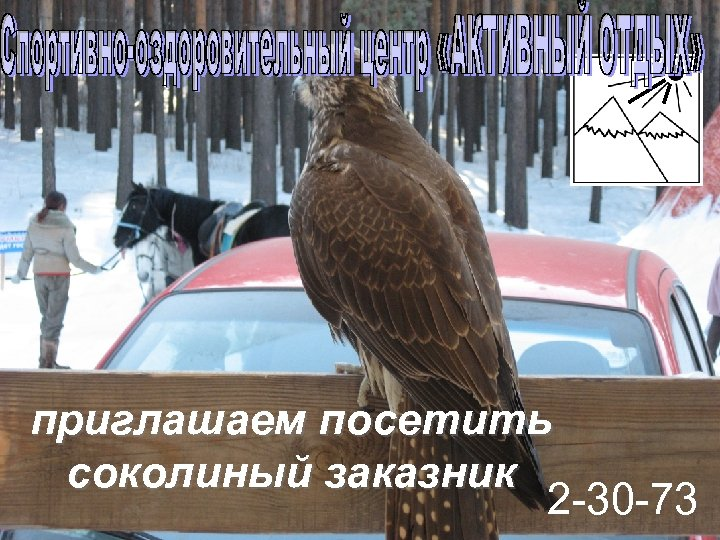 приглашаем посетить соколиный заказник 2 -30 -73
