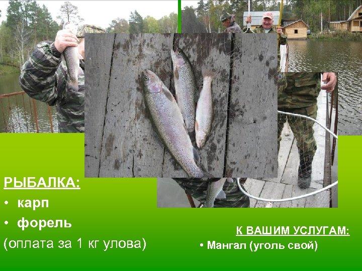 РЫБАЛКА: • карп • форель (оплата за 1 кг улова) К ВАШИМ УСЛУГАМ: •