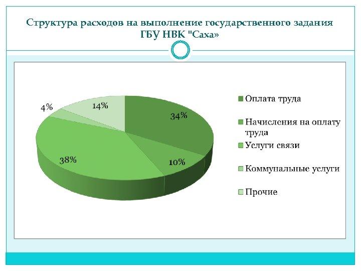 Структура расходов на выполнение государственного задания ГБУ НВК