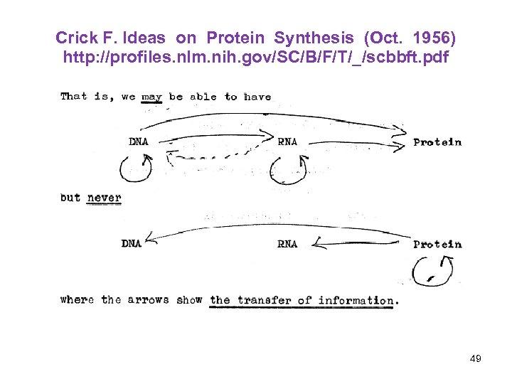 Crick F. Ideas on Protein Synthesis (Oct. 1956) http: //profiles. nlm. nih. gov/SC/B/F/T/_/scbbft. pdf
