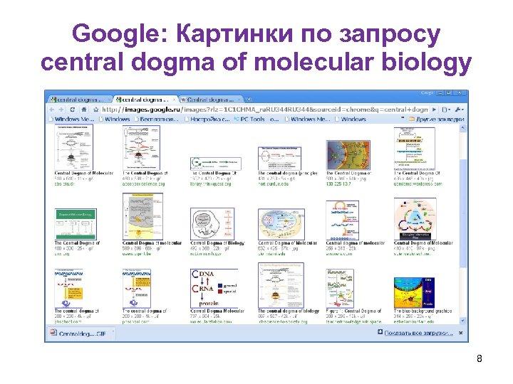 Google: Картинки по запросу central dogma of molecular biology 8