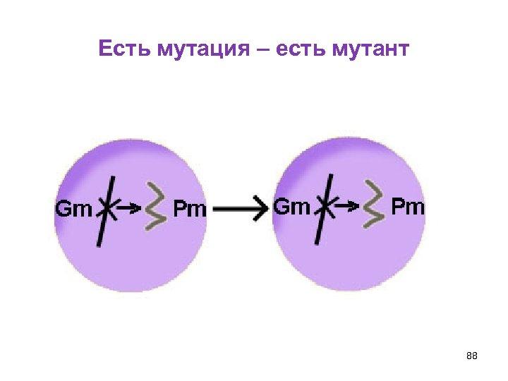 Есть мутация – есть мутант 88