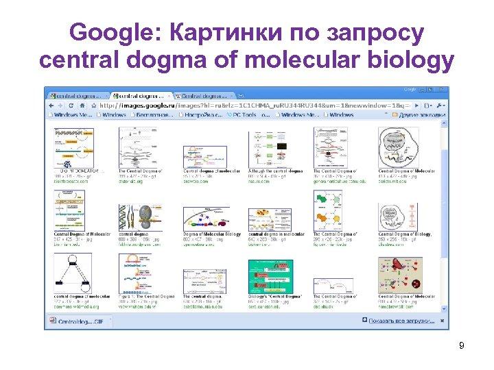 Google: Картинки по запросу central dogma of molecular biology 9