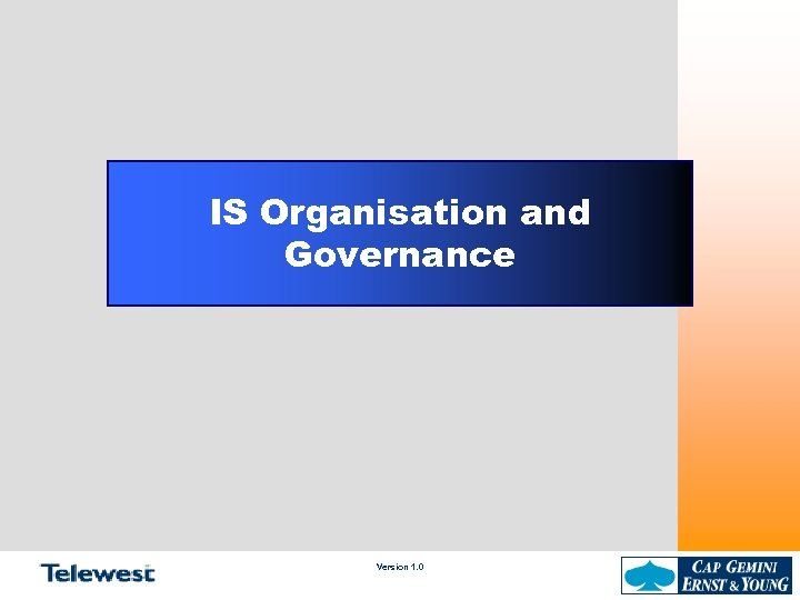 IS Organisation and Governance Version 1. 0