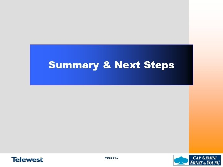 Summary & Next Steps Version 1. 0