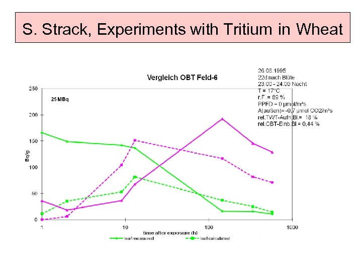 S. Strack, Experiments with Tritium in Wheat